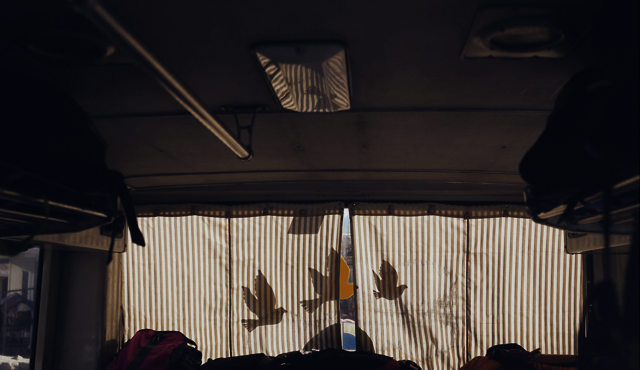 Bird shadows in the back of the bus