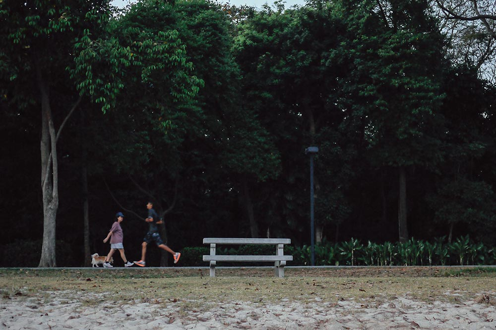 Man jogging and woman walking her dog