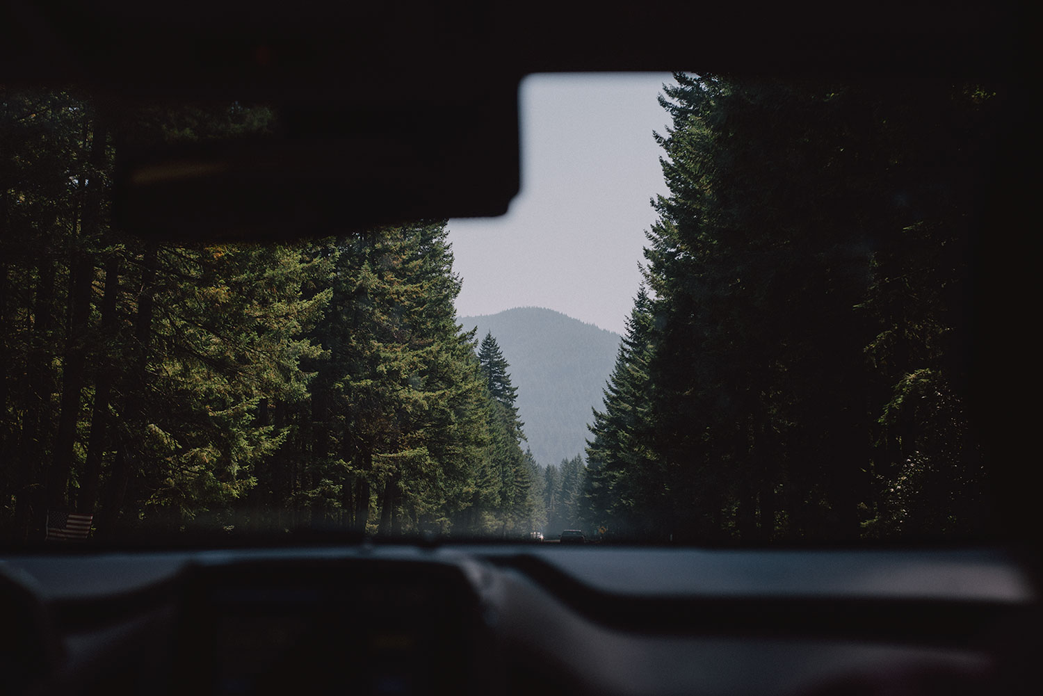 Driving between the forests
